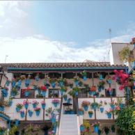 Por qué visitar los patios de Córdoba en mayo