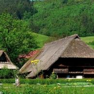 Un lugar para perderse, explorar y descubrir... La Selva Negra en Alemania