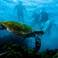 Un increíble viaje por Australia, conoce Byron Bay