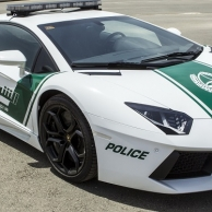 Dubai police at another level, driving Ferrari, Lamborghini and Camaro
