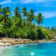 The five best beaches in Barbados and the best places for diving