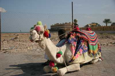 Hurghada Luchthaven Autoverhuur