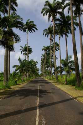 Les Abymes Pole Caraibes Airport Car Rental